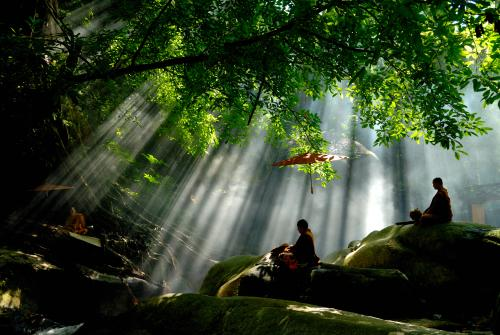 Buddhist monks meditating in nature