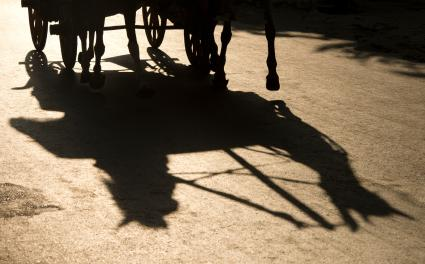 Shadow of a horse and carriage