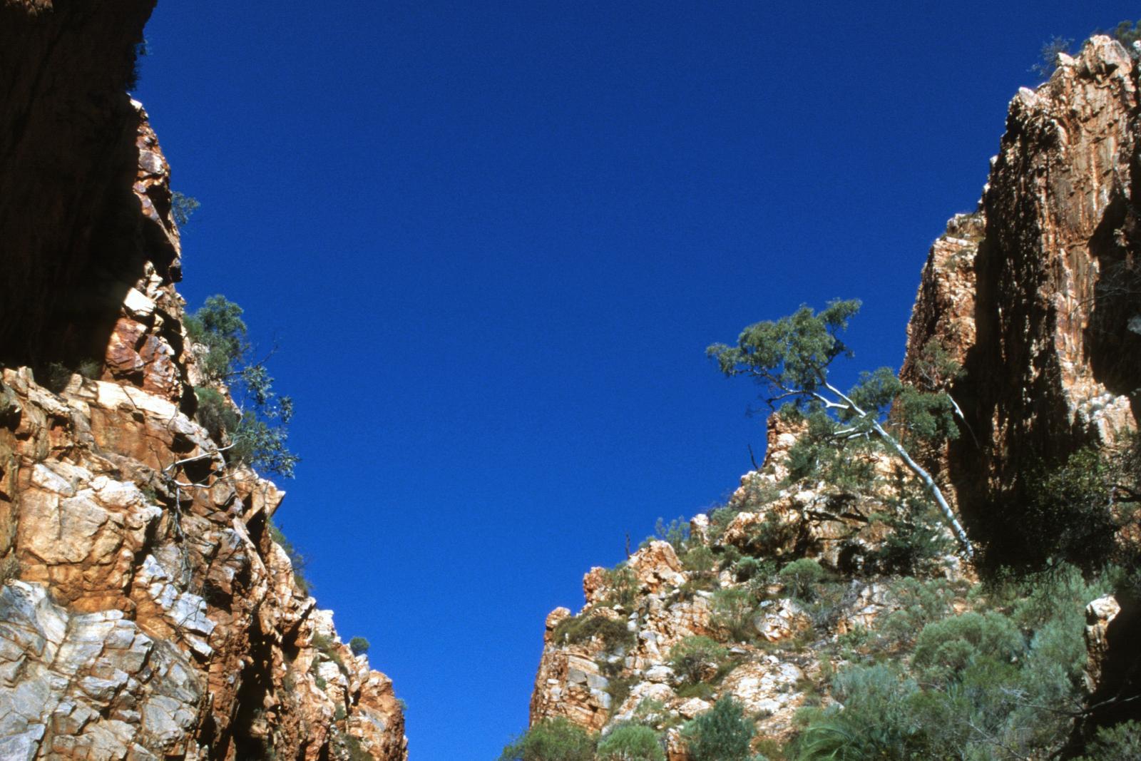 Turnbull Canyon