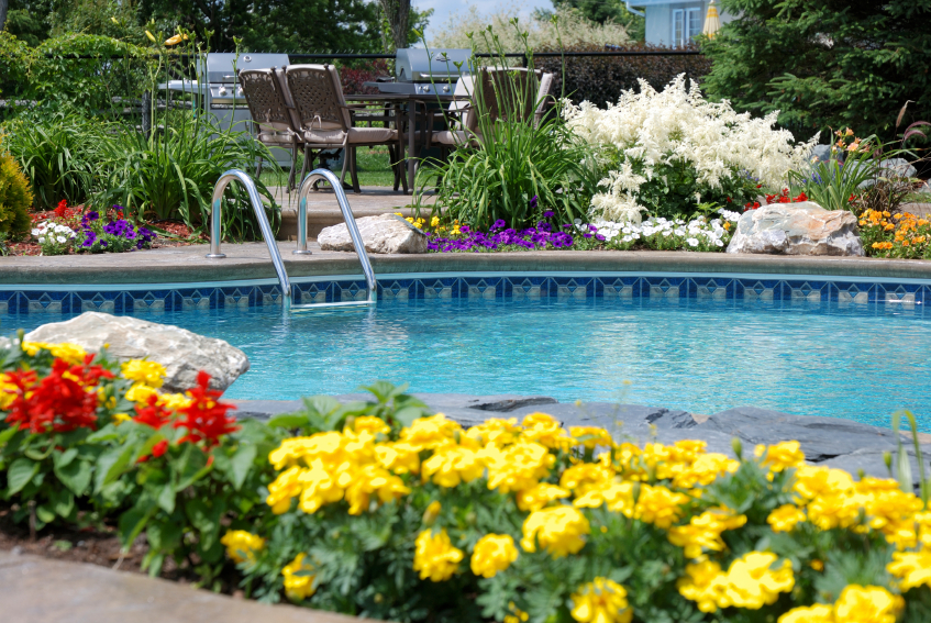 Swimming_Pool_Flowers.jpg