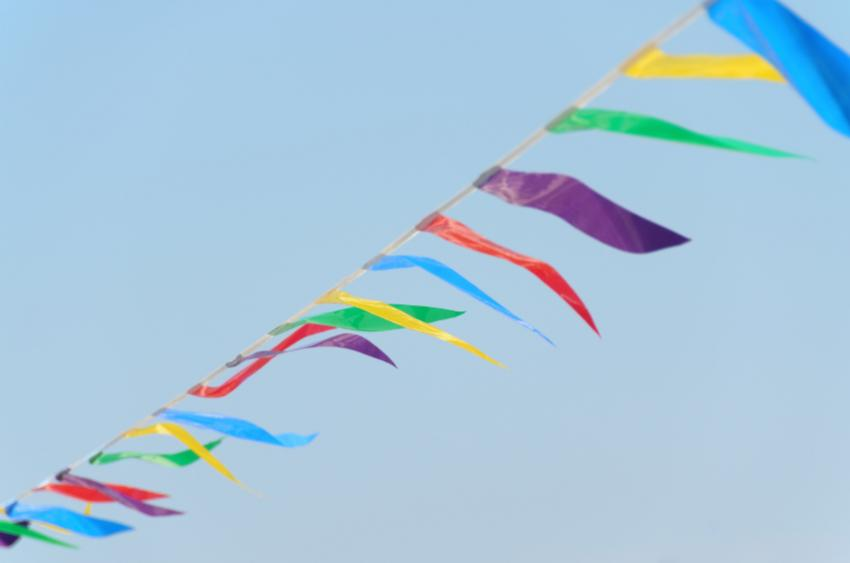 https://cf.ltkcdn.net/party/images/slide/105855-850x563-Colored_Nylon_Flags.jpg