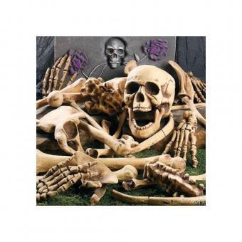 https://cf.ltkcdn.net/party/images/slide/105755-500x500-Bones.jpg