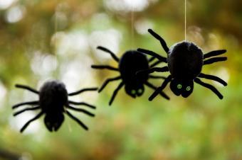 https://cf.ltkcdn.net/party/images/slide/105919-849x565-SPIDER.jpg