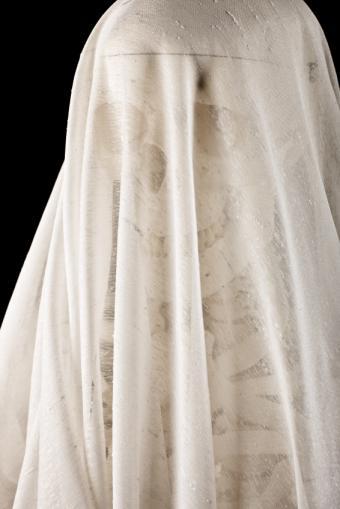 https://cf.ltkcdn.net/party/images/slide/146196-566x848-skeleton_ghost.jpg