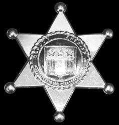 Silver Plastic Sheriff Badge