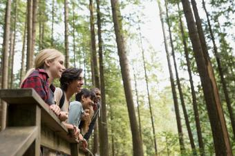 Friends in woods