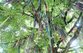 New Orleans Mardi Gras Tree
