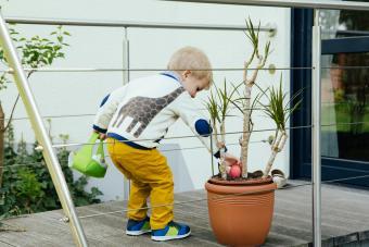 Little boy finding an Easter egg in plant pot