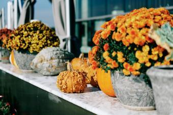 https://cf.ltkcdn.net/party/images/slide/281551-850x567-20-fall-garden-party.jpg