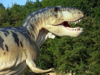 Dinosaur Party Menu