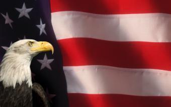 Eagle Scout Invitation Wording