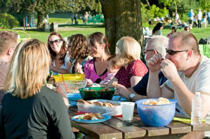 Family reunion picnic