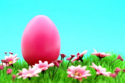 Where Can I Buy Giant Plastic Easter Eggs