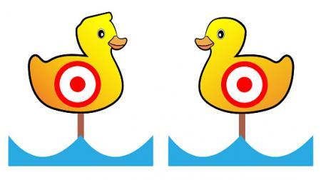 Duck Targets