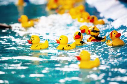 Yellow Toy Ducks Floating On Water