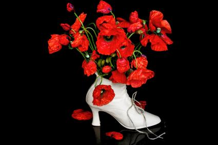 Poppy Flowers In Shoe Shape Vase