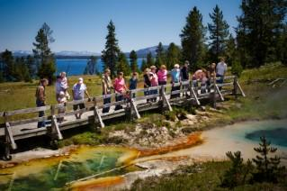 Theme family reunions around vacation spots in the U.S., such as Yellowstone National Park.
