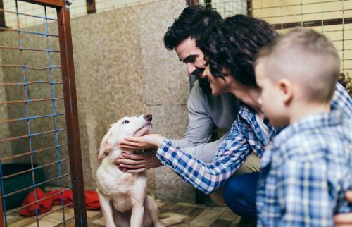 familia feliz adoptando un perro