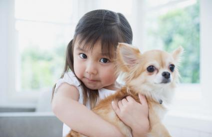 Niña abrazando a su perro Chihuahua
