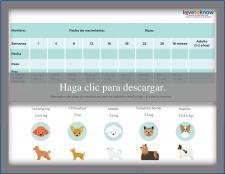 Tabla para el peso del cachorro de razas mini y toy