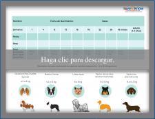Tabla para el peso del cachorro razas pequeñas