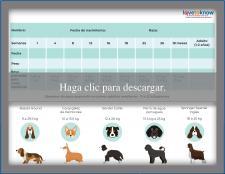 Tabla para el peso de cachorro raza medianas