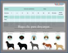 Tabla para el peso de cachorro razas gigantes
