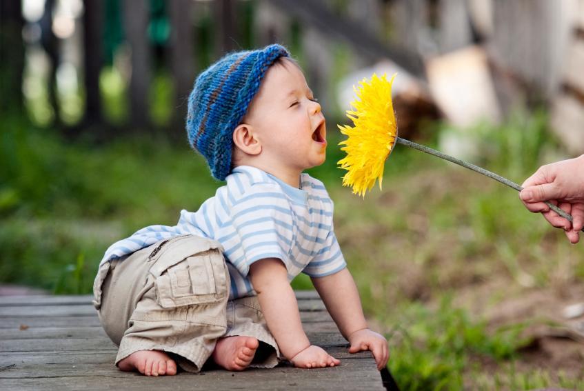https://cf.ltkcdn.net/photography/images/slide/62526-847x567-5flower.jpg
