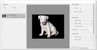 Exporting files in Photoshop with detail screen.