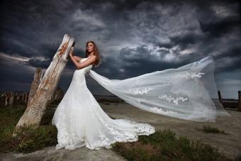 https://cf.ltkcdn.net/photography/images/slide/217576-704x469-Stunning-Bridal-Shot-With-Natural-Background.jpg