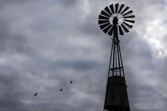 https://cf.ltkcdn.net/photography/images/slide/234888-850x567-7-Old-Windmill.jpg