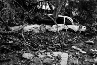 https://cf.ltkcdn.net/photography/images/slide/234895-850x567-4-Katrina-Disaster.jpg