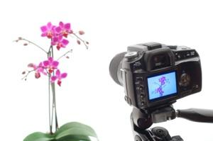 Digital Photography Tutorials and Lessons