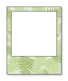 Green Polaroid