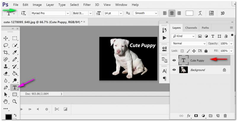 Adding Text to an Image in Photoshop