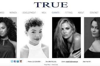 Screenshot of website at Truemodel.net/curves