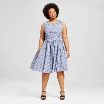https://cf.ltkcdn.net/plussize/images/slide/213444-700x700-Womens-Plus-Size-Pleated-Dress-Navy-Gingham.jpg