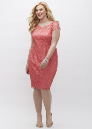 Lace Cap Sleeve Dress by Adrianna Papell