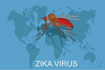 Zika virus concept