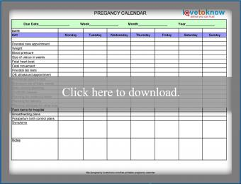 Pregnancy Calendar printable thumbnail