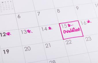How to Make and Use an Ovulation Chart