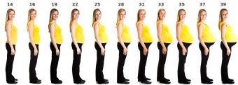 pregnancy belly growth