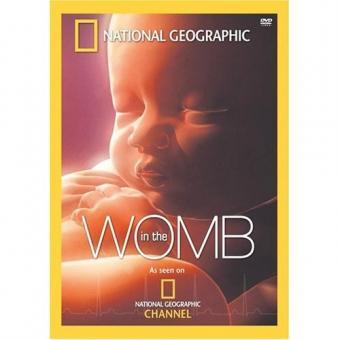 https://cf.ltkcdn.net/pregnancy/images/slide/88216-500x500-inthewomb.jpg