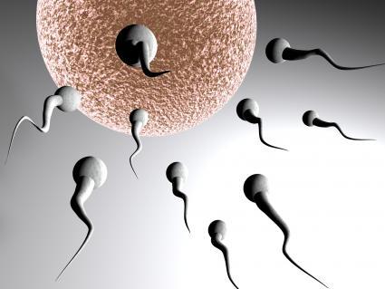 Illustration of sperm rushing toward an egg