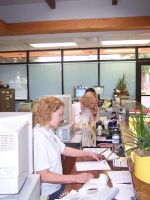 Image of women working in an office
