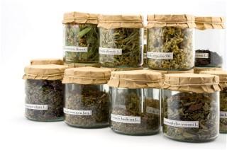 Image of medicinal fertility herbs