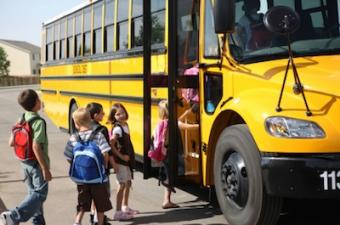 School Is in Session Driving Safety Tips