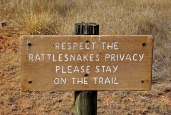 https://cf.ltkcdn.net/safety/images/slide/147658-847x567r1-RattlesnakeWarning.jpg