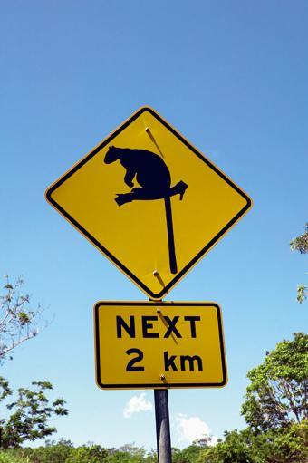https://cf.ltkcdn.net/safety/images/slide/170042-566x850-Animal-Crossing.jpg