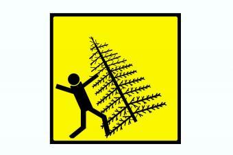 https://cf.ltkcdn.net/safety/images/slide/170045-850x566-Christmas-Tree-Danger.jpg